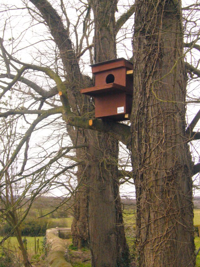 Installing the Owl Box